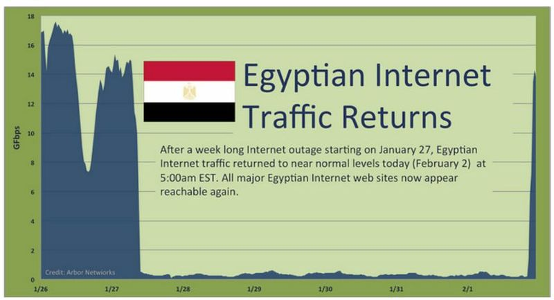 Egypt returns to net