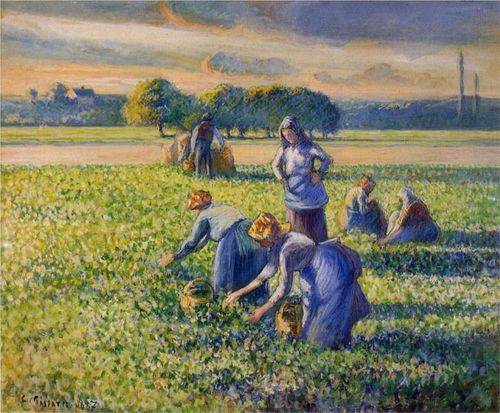 Pissarro-picking-peas